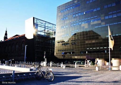 Black Diamond di Copenhagen - di Silvia Montis