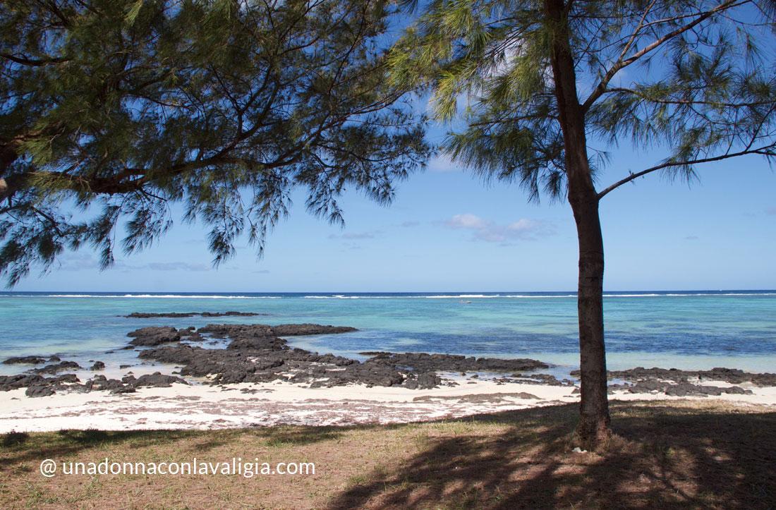 mauritius spiaggia palmar