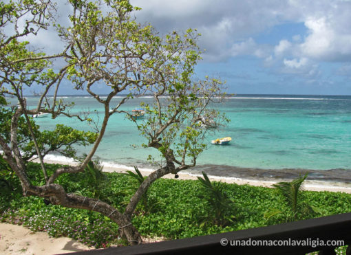 vista seychelles