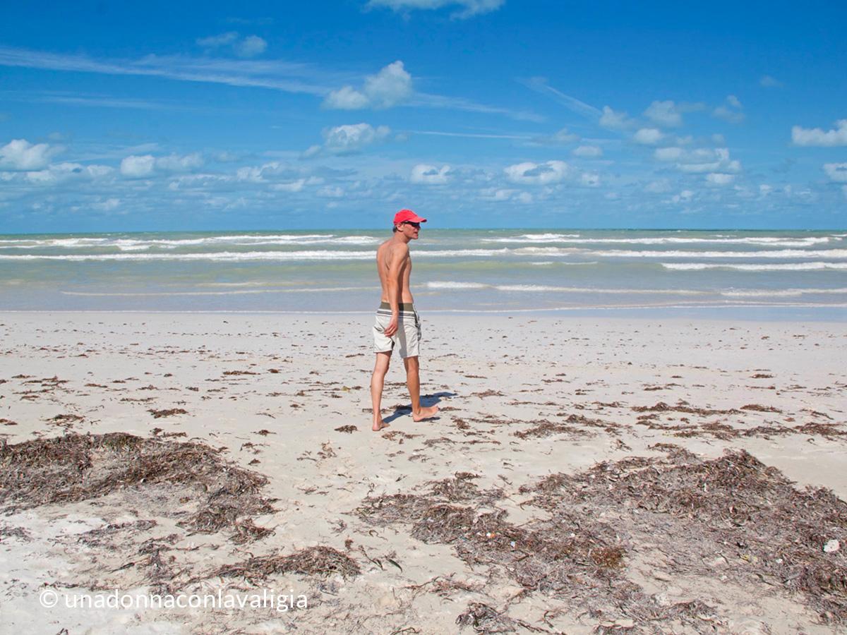 el-cuyo-mexico-beach-seaweed+