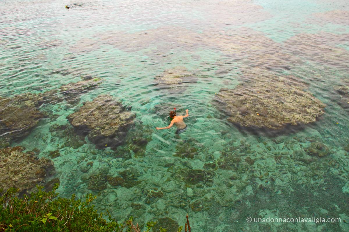 snorkeling nuova caledonia